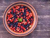 Strawberries and blueberries, wild berry Royalty Free Stock Image