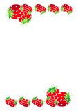 Strawberries Border Stock Photos