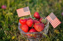 Strawberries in a bowl with american flags royalty free stock images