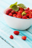 Strawberries in  bowl Royalty Free Stock Photography