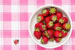 Strawberries in a bowl and ladybird Stock Photos