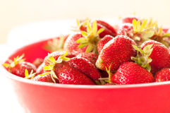 Strawberries in bowl Royalty Free Stock Image