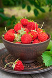 Strawberries on a bowl Stock Photo