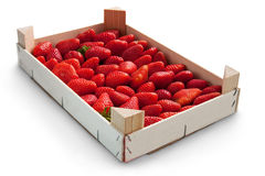 Strawberries in box Royalty Free Stock Photos