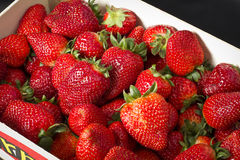 Strawberries box Stock Photography