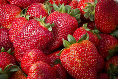 Strawberries box Royalty Free Stock Image