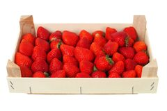 Strawberries in a box stock photography