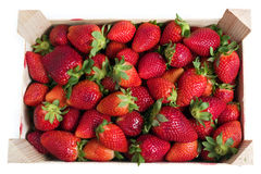 Strawberries box Stock Image