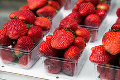 Strawberries in boxes as healthy food Royalty Free Stock Photo