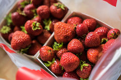 Strawberries in boxes. Royalty Free Stock Photography