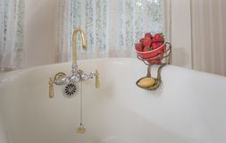 Strawberries in brass hanger on side of old bath tub royalty free stock images