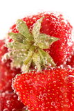 Strawberries and bubbles Stock Image