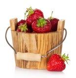 Strawberries in bucket Stock Photography