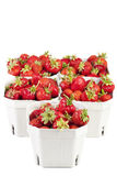 Strawberries in cardboard boxes Stock Photography