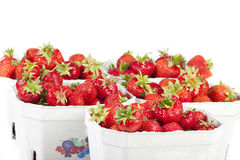 Strawberries in cardboard boxes Stock Image