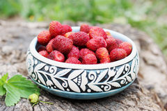 Strawberries in a ceramic bowl Royalty Free Stock Photos