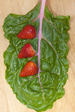 Strawberries on chard. Royalty Free Stock Photo