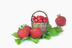 Strawberries, cherries and wild strawberries Stock Photos