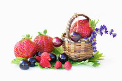 Strawberries, cherries and wild strawberries Royalty Free Stock Images