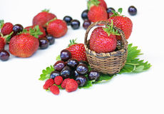 Strawberries, cherries and wild strawberries Royalty Free Stock Photos