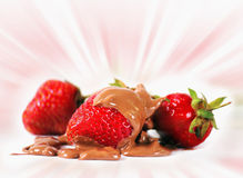 Strawberries in chocolate Royalty Free Stock Images