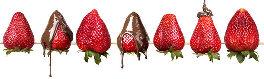 Strawberries and chocolate isolated Stock Image