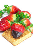 Strawberries in chocolate and waffles isolated on Stock Images