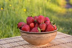 Strawberries in a clay bowl Stock Photography