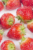 Strawberries are cleaned prior to processing Stock Photos