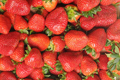 Strawberries in close-up Royalty Free Stock Photos