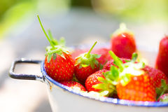 Strawberries - close up Royalty Free Stock Photo