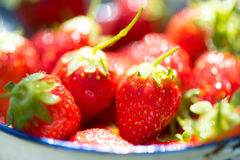 Strawberries - close up Royalty Free Stock Photos