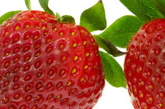 Strawberries. Close-up, isolated on white Stock Images