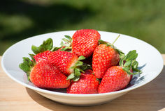 Strawberries - close up Royalty Free Stock Image