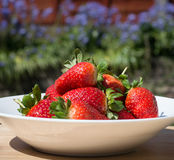 Strawberries - close up stock photos