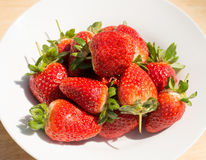 Strawberries - close up Stock Images