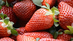 Strawberries Close Up stock footage