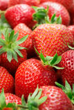 Strawberries closeup Stock Photo