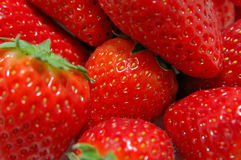 Strawberries closeup Royalty Free Stock Images