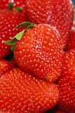 Strawberries 1 Stock Photo