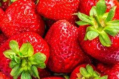 Strawberries Closeup. Closeup of fresh strawberries. Studio Shot Stock Photos