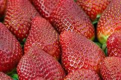 Strawberries, closeup Stock Photography