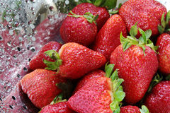 Strawberries in colander Royalty Free Stock Photo