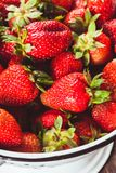 Strawberries in colander Stock Image