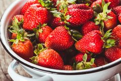 Strawberries in colander Stock Photography