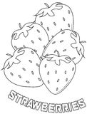 Strawberries coloring page Stock Photos