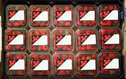 Strawberries in containers with stickers on them Stock Photography
