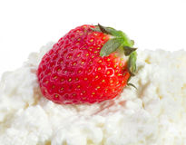 Strawberries and cottage cheese Stock Images