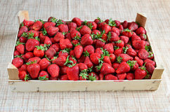 Strawberries in a crate Royalty Free Stock Photo