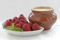 Strawberries Stock Photography